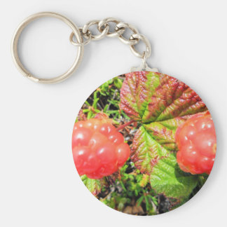 salmon berries keychains