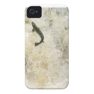 Salmon BlackBerry Bold Case-Mate Barely There iPhone 4 Covers