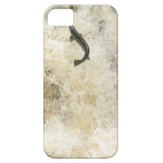Salmon iPhone 5 Case-Mate Barely There