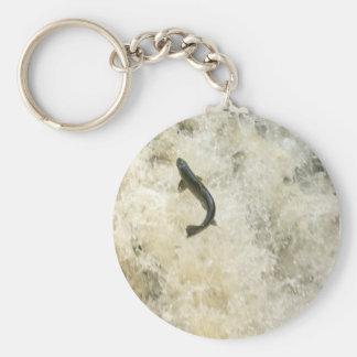 Salmon Key Chain Keychains
