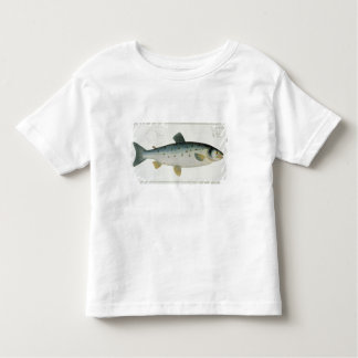 Salmon (Salmo Salar) plate XX from 'Ichthyologie, Toddler T-Shirt
