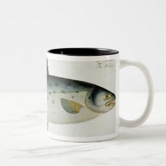 Salmon (Salmo Salar) plate XX from 'Ichthyologie, Two-Tone Coffee Mug