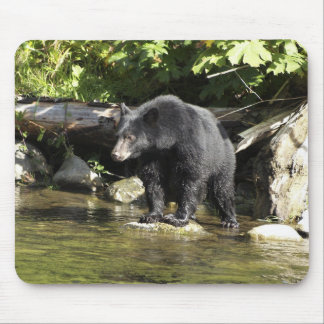 """Salmon Spotting"" Mouse Pad"