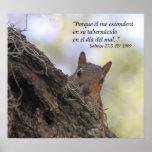 Salmos 27-5 con Ardilla Posters