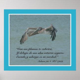 Salmos 91:4 con Pelicano Volando (Cartel) Posters