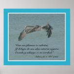 Salmos 91:4 con Pelicano Volando (Cartel) Print