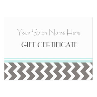 Salon Gift Certificate Aqua Grey Chevron Pack Of Chubby Business Cards