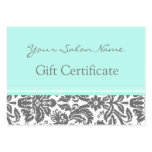 Salon Gift Certificate Aqua Grey Damask Pack Of Chubby Business Cards