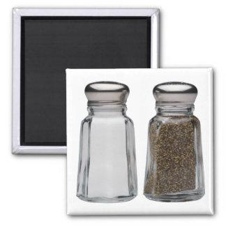 Salt and Pepper Fridge Magnet