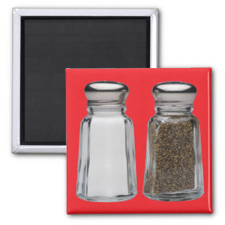 Salt and Pepper Magnets