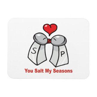 Salt and Pepper Shakers Valentine Vinyl Magnets
