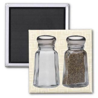 Salt and Pepper Square Magnet