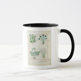 Salt Bush and Anthora Absinthium and Cardamom Mug