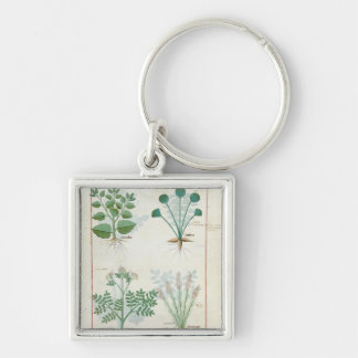 Salt Bush and Anthora Absinthium and Cardamom Silver-Colored Square Key Ring