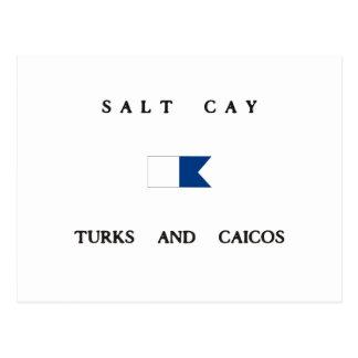 Salt Cay Turks and Caicos Alpha Dive Flag Postcard