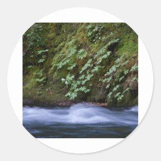 Salt Creek Oregon Round Stickers