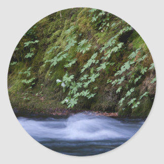Salt Creek Oregon Round Sticker