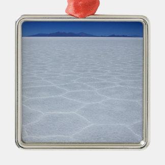 SALT FLATS CHRISTMAS ORNAMENT