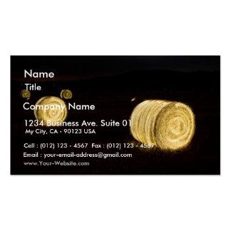 Salt Flats Pack Of Standard Business Cards