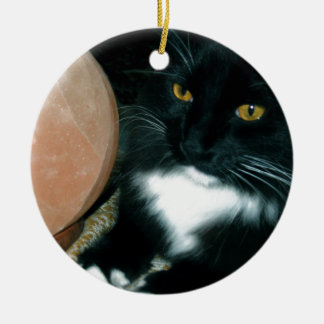 Salt Globe and Cat Psychic - Photograph Christmas Ornament