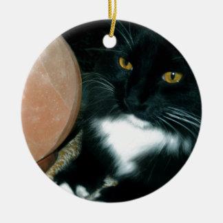 Salt Globe and Cat Psychic - Photograph Round Ceramic Decoration