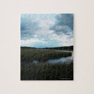 Salt marsh puzzle