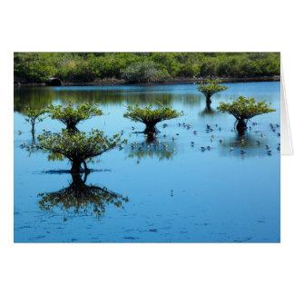 Salt Marsh with Mangroves Greeting Card