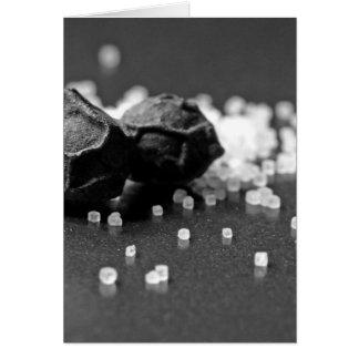 Salt Pepper Macro Image In Studio Greeting Card