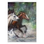 Salt River Wild Horses Greeting Cards