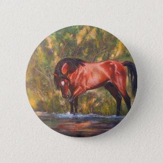 Salt River Wild Stallion Tango 6 Cm Round Badge