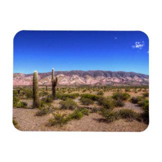 Salta Argentina Cactus Plants And Barren Hill Rectangular Photo Magnet