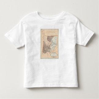 Salta, Argentina Toddler T-Shirt