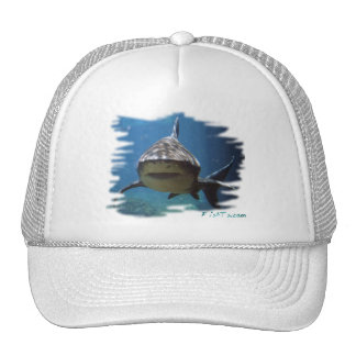 Saltwater Collection by FishTs.com Mesh Hat