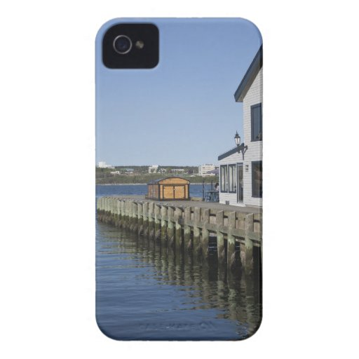 Salty's Wharf Blackberry Cases