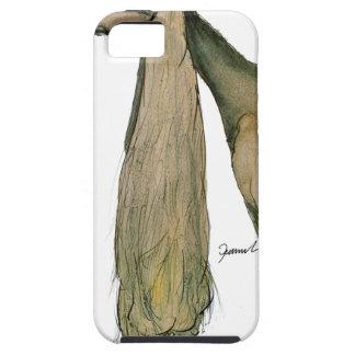 saluki dog, tony fernandes iPhone 5 cover