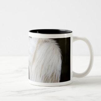 Saluki Looking Up Two-Tone Coffee Mug