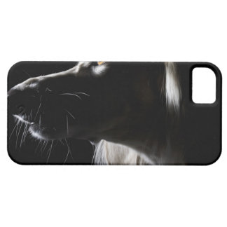 Saluki, portrait case for the iPhone 5