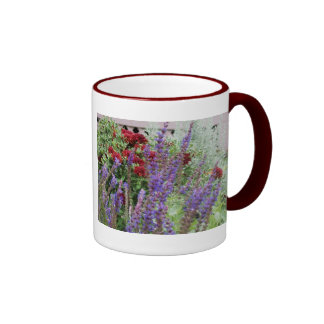 salvia and mums 2x pics ringer mug