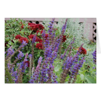 salvia and mums note card