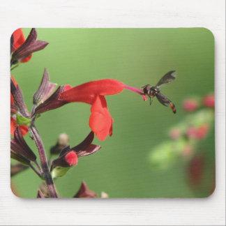 Salvia and Native Bee Mousepad