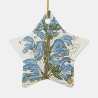 Salvia Barrelieri Ceramic Star Decoration