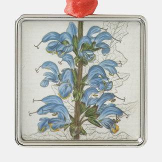 Salvia Barrelieri Silver-Colored Square Decoration