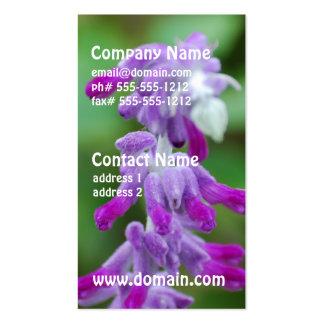 Salvia Business Card Templates