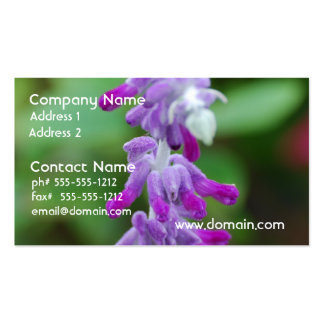 Salvia Pack Of Standard Business Cards