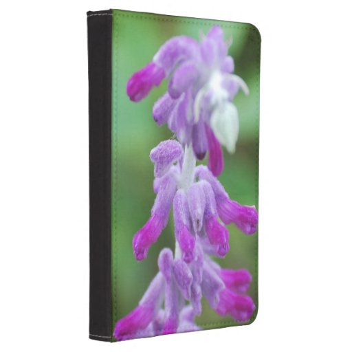 Salvia Kindle Touch Cover