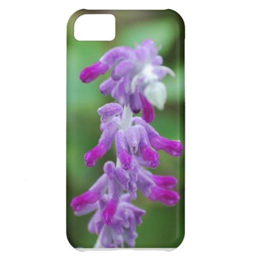 Salvia iPhone 5C Cases
