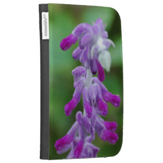 Salvia Kindle 3G Cases