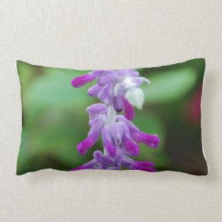 Salvia Pillows