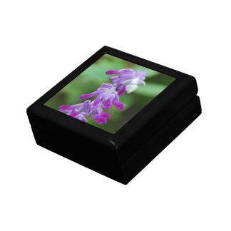 Salvia Keepsake Boxes