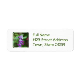 Salvia Return Address Label